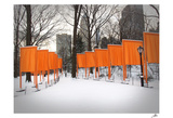 The Gates, Central Park Prints by Igor Maloratsky