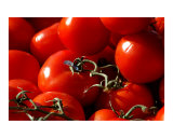 Tomatoes Photographic Print by Keith Clarke