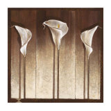 Three Calla Lilies Posters by Mira Latour