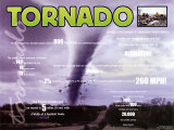 Tornado, Wild Weather Poster
