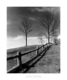 Fences and Trees, Empire, MI Prints by Monte Nagler