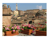 Siena Skyline Photographic Print by Stephanie Elenbaas