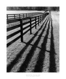 Fences and Shadows, Florida Art by Monte Nagler