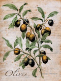 Olives Prints by Renee Bolmeijer