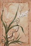 Asian Orchid I Art by Susanne Renee Leasure
