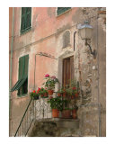 Vernazza Doorway Photographic Print by Stephanie Elenbaas