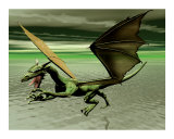 Dragon Photographic Print by John Junek