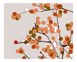 Orange Cherry Blossom Photographic Print by Estela Lugo
