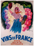 Vins de France Giclee Print by Antoine Galland