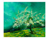 Apple Tree in Spring Landscape Giclee Print by Pol Ledent