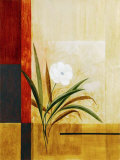 Single White Flower Print by Fernando Leal