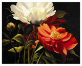 Red Peony Posters by Diann Haist