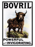 Bovril Beef Extract Reproduction procédé giclée