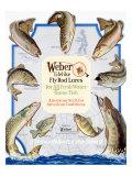 Weber Fly Rod Fishing Lures Impression giclée
