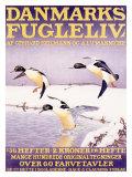 Denmark Bird Society Giclee Print