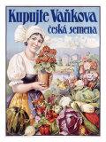 Czech Flower and Produce Festival Giclee Print