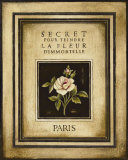 Les Fleurs de Paris I Art by Kimberly Poloson