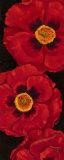 Bella Grande Poppies Prints by Paul Brent
