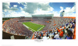 Florida Gators Posters