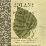 Botany Principles III Art by Paula Scaletta