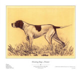 Hunting Dogs, Pointer Posters by Andres Collot