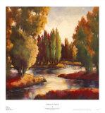 Sullivan's Creek II Posters by Adam Rogers