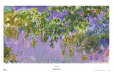 Wisteria Prints by Claude Monet