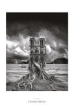 Stumped Art by Thomas Barbey