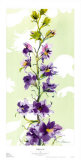 Delphinium Prints by Martha Collins