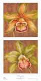 Aloha Beauty Petites Prints by Judy Shelby