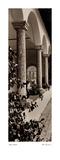 Portico, Toscana Posters par Alan Blaustein