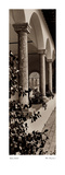Portico, Toscana Posters by Alan Blaustein