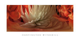 Dahlias IV Prints by Huntington Witherill