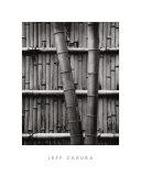 Bamboo and Wall Posters by Jeff Zaruba
