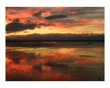 Sunset over Atawhai Estuary Photographic Print by cindie k watkinson
