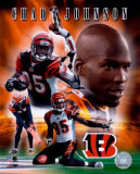 Chad Johnson Photo