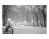 Literary Walk Snowstorm - Central Park, New York Photographic Print by DW labs
