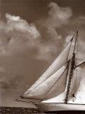 Sepia Sails II Posters av Cory Silken