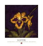 Winter Song II Art by Robert Ichter