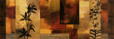 Chris Donovan - Dharma II Plakát
