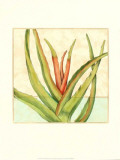 Tropicana Botanical VI Print by Jennifer Goldberger
