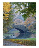 Bridge Photographic Print by WAYNE K. HOUSER