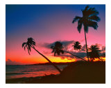 Caribbean Sunset Photographic Print by George Oze