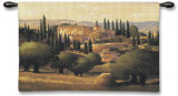 Warm Tuscan Sun Wall Tapestry by Max Hayslette