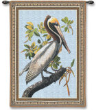 Brown Pelican Wall Tapestry by John James Audubon