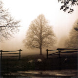 Morgendliche Landschaftsstruktur|Morning Texture Kunst von Harold Silverman