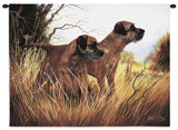 Border Terrier Wall Tapestry by Robert May