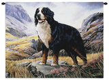 Bernese Mountain Dog Wall Tapestry by Robert May