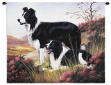 Border Collie Wall Tapestry by Robert May