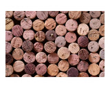 Red Wine Corks Photographic Print by Frank Tschakert